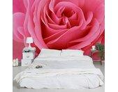 Vliesbehang Lustful Pink Rose