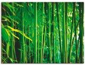Artland Artprint Bamboe I in vele afmetingen & productsoorten -artprint op linnen, poster, muursticker / wandfolie ook geschikt voor de badkamer (1 stuk)