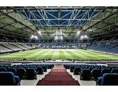 Wall-Art Vliesbehang Schalke 04 Arena tribune