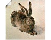 Artland Artprint Jonge haas. 1502 in vele afmetingen & productsoorten -artprint op linnen, poster, muursticker / wandfolie ook geschikt voor de badkamer (1 stuk)