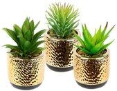 I.GE.A. Kunstplant Sukkulenten-Set In een keramische pot